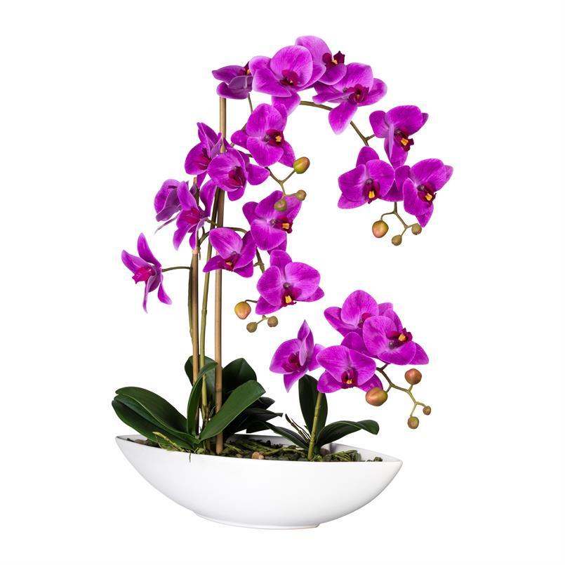 Orchidee lila mit Schale, 60cm, Kunstpflanze