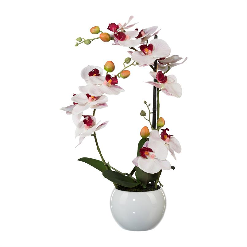 Orchidee rosa mit Topf, 42cm, Kundtpflanze