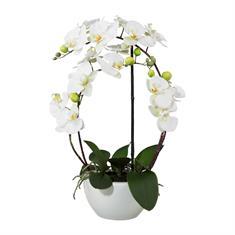 Orchidee weiß mit Topf, 52cm, Kunstpflanze