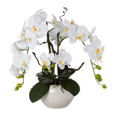 Orchidee weiß mit Topf 55cm, Kunstpflanze