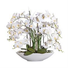 Orchidee weiss in Keramikschale, 70cm, Kunstpflanze