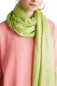 Women Shawls/Scarves shawls